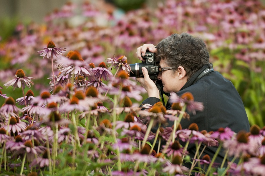 Photography in Hastings Park