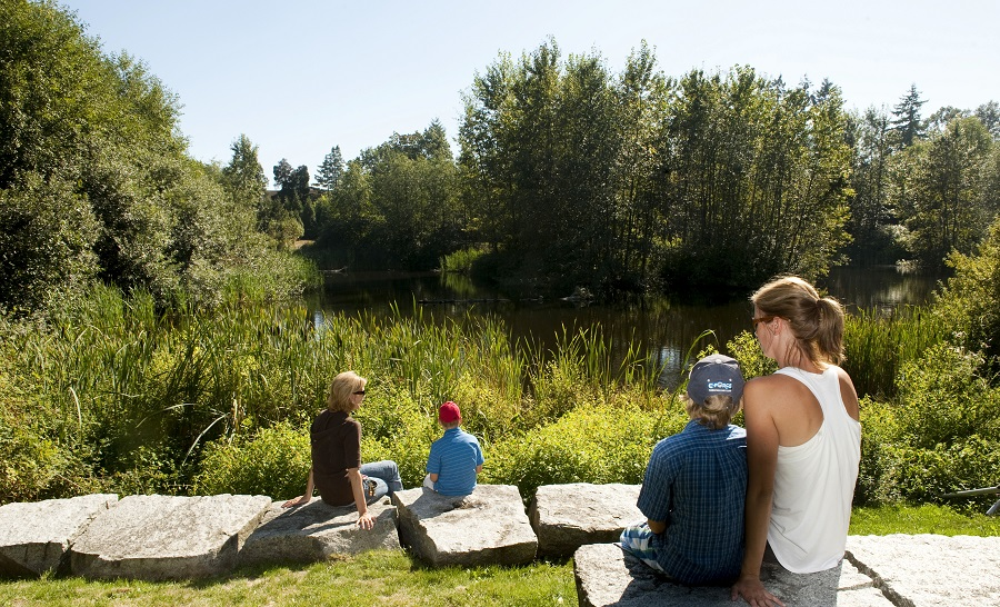 Hastings Park - Sanctuary- Vancouver, BC