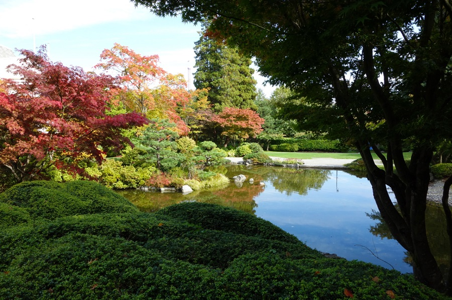 Hastings Park  Momiji Garden   Vancouver, BC